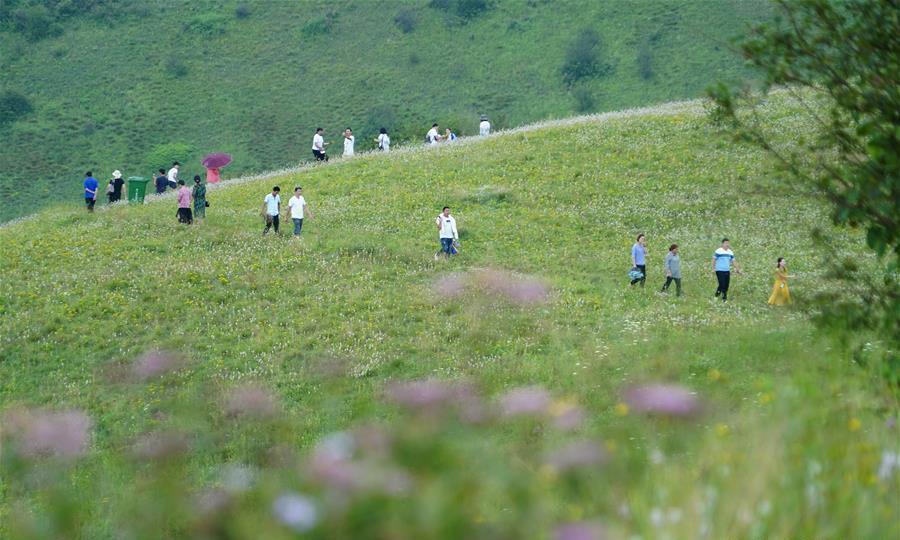바산의 비경 선톈초원