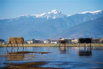 아름다운 풍경의 샹그릴라