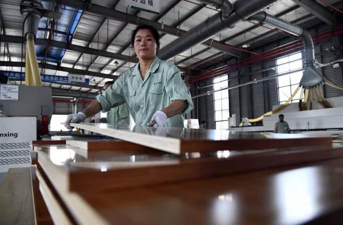 산둥 페이현: 목가공업, 농촌진흥 추진